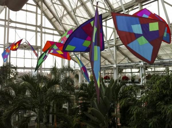 Butterflies in Hilbert Conservatory