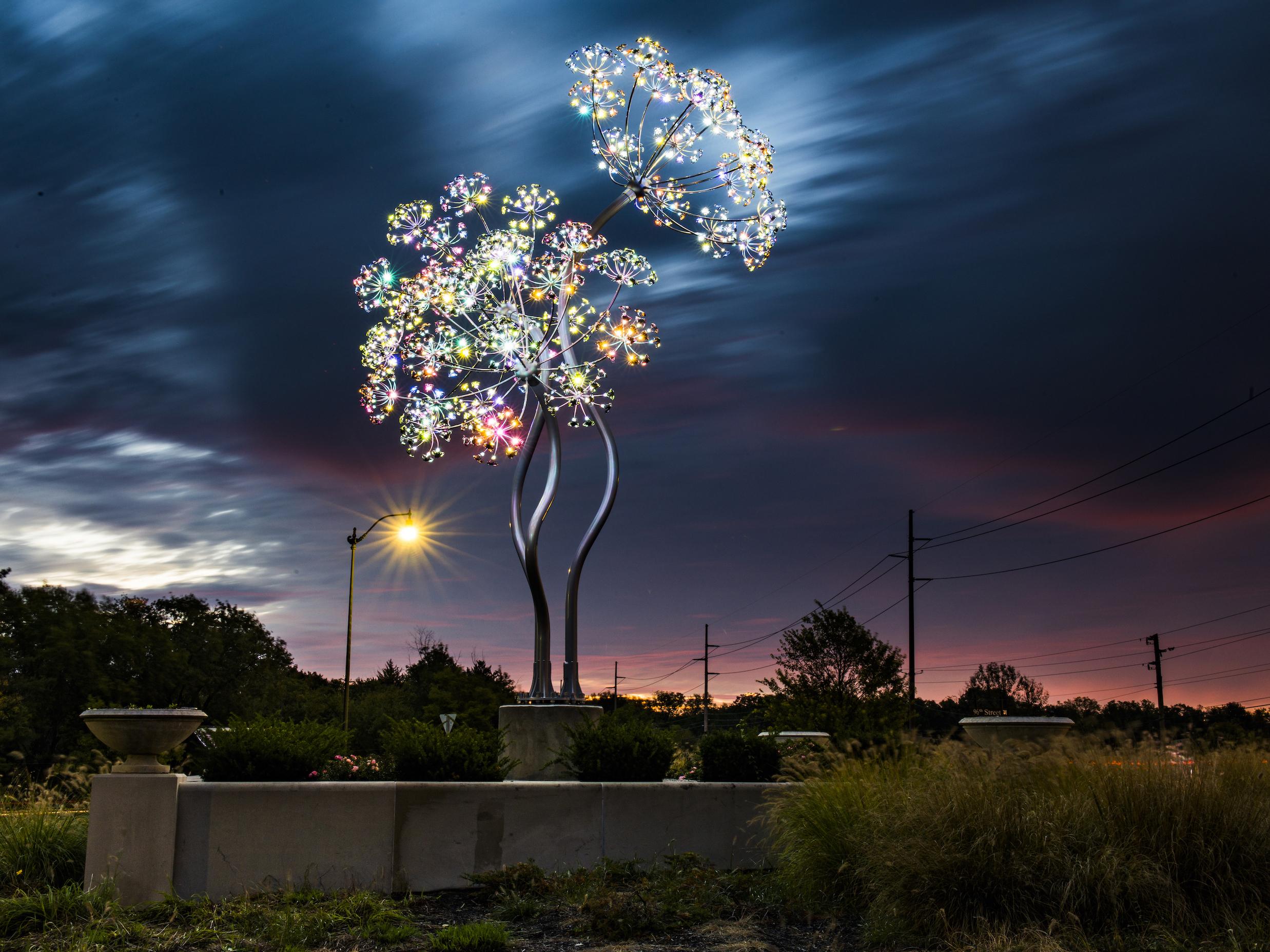 Beacon Bloom