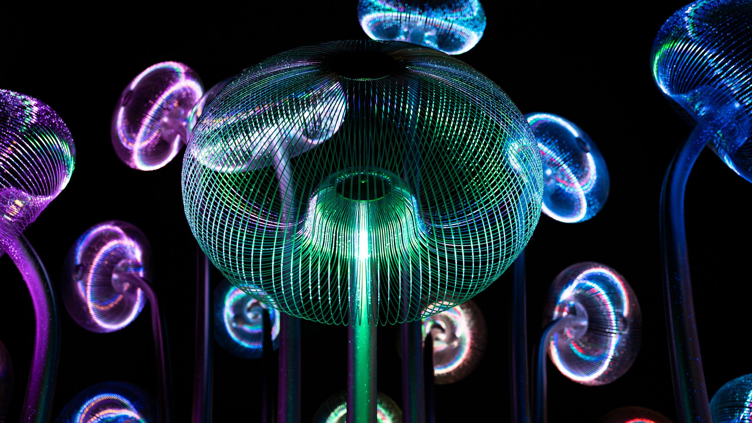 Bubble Forest