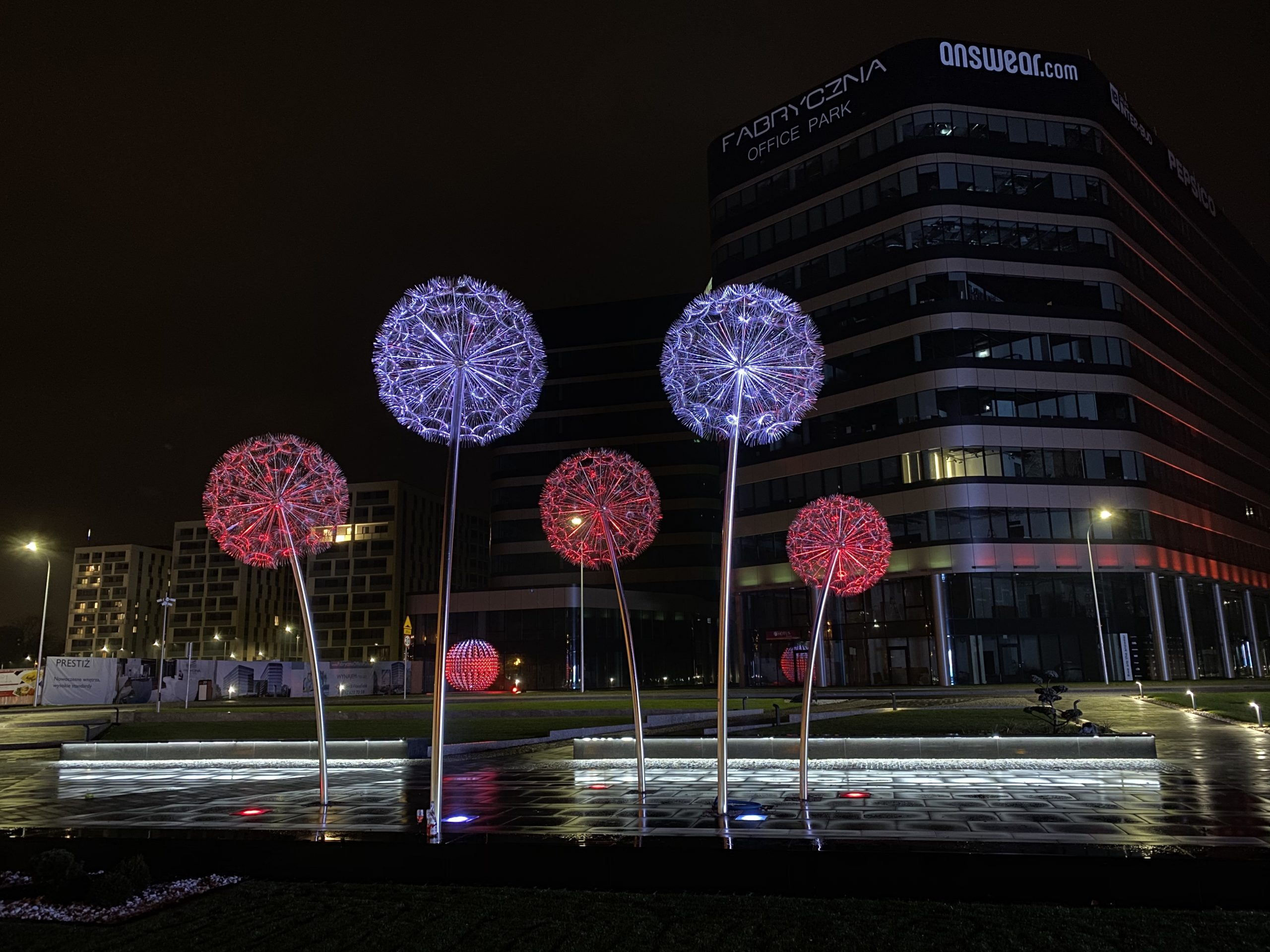 Dandelion Lights Cracow