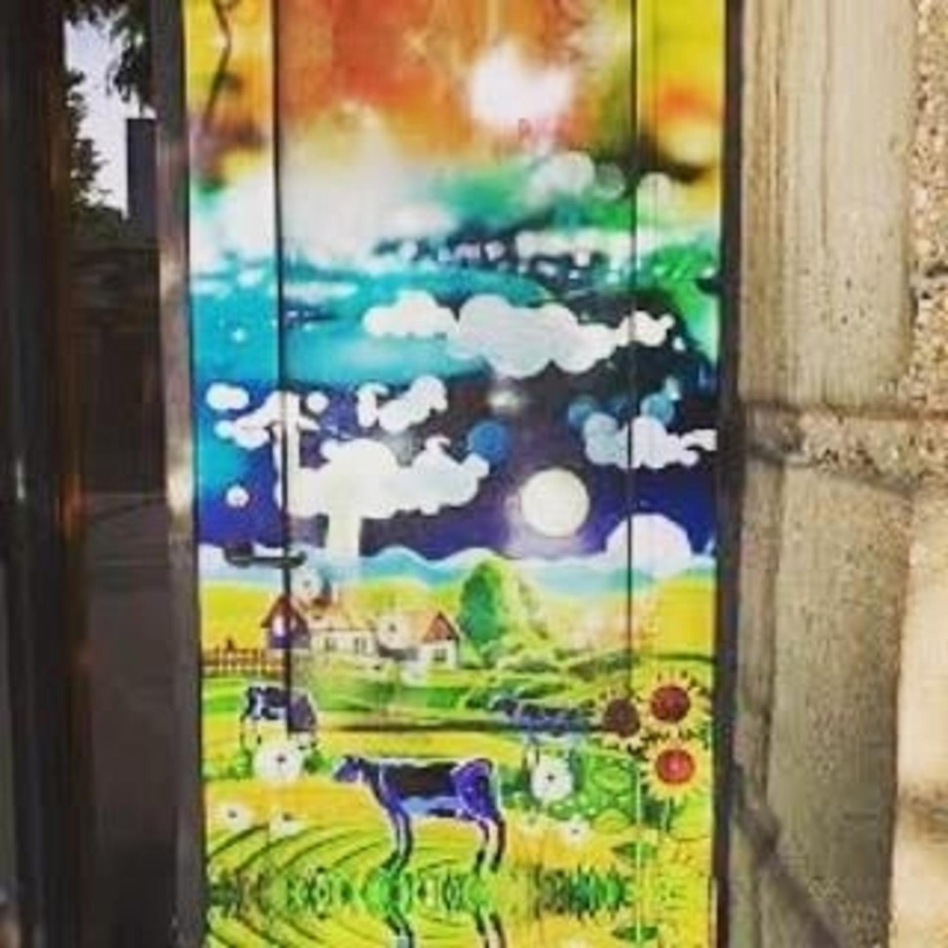 Downtown Alley Doors Regina