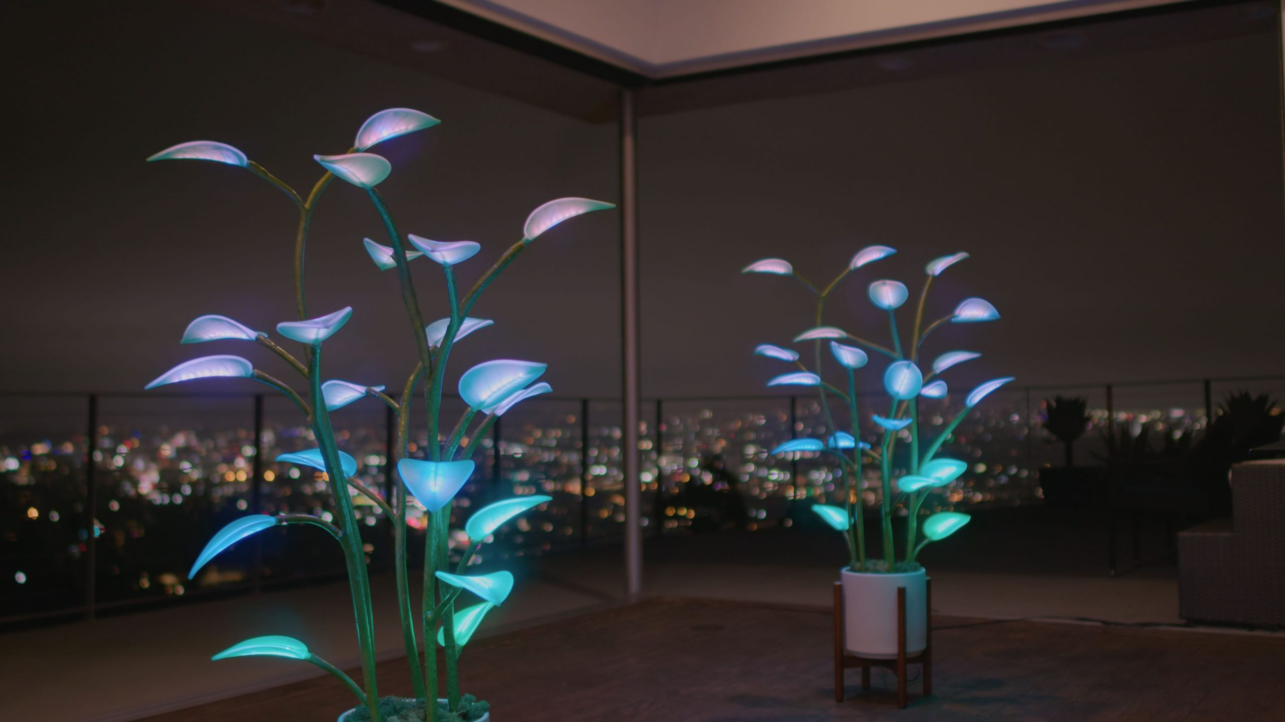 Fluora – The Magical LED Houseplant
