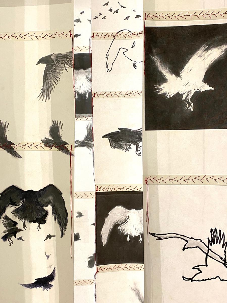 Birdscreens