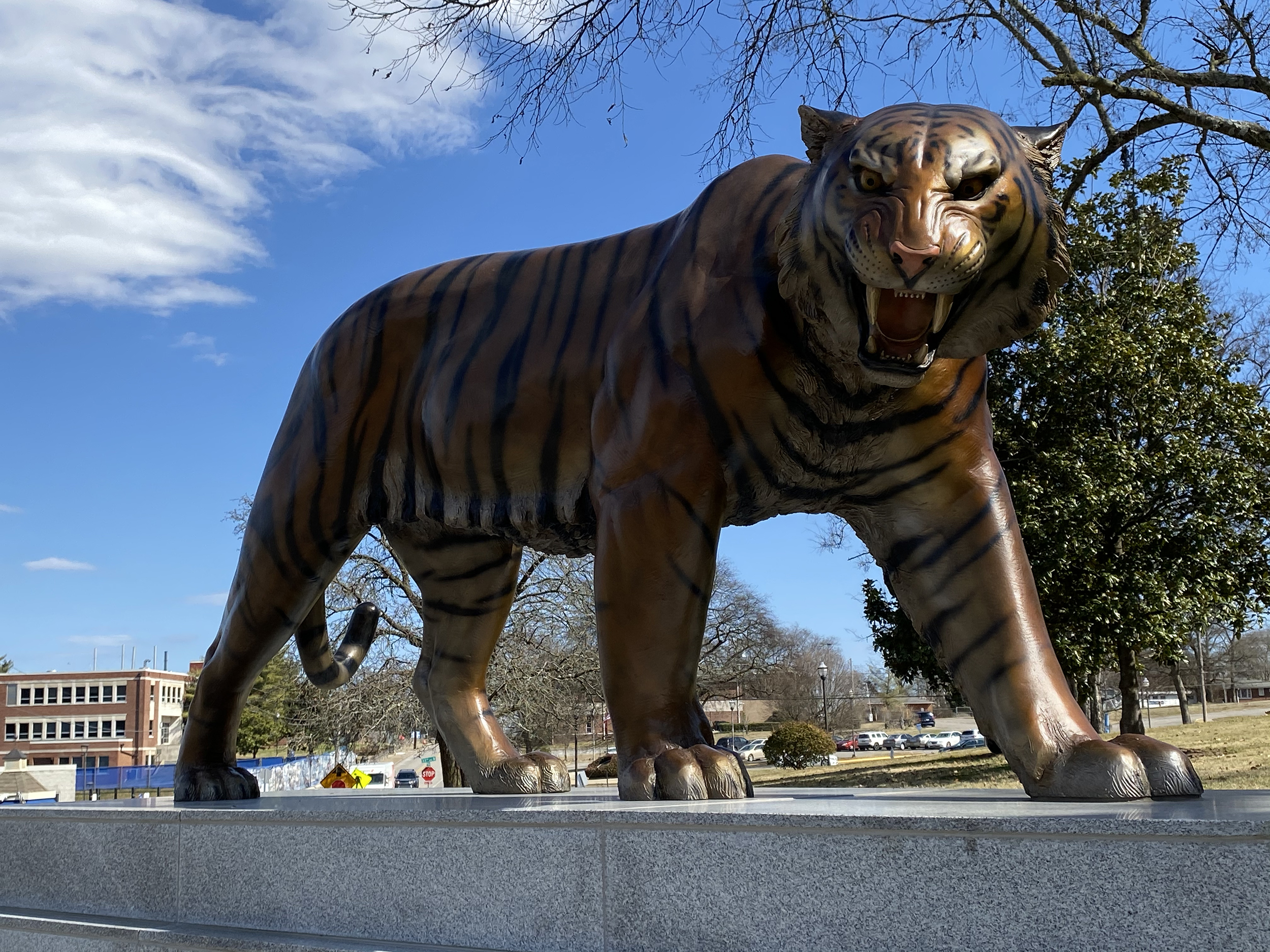 Tennessee State Tiger