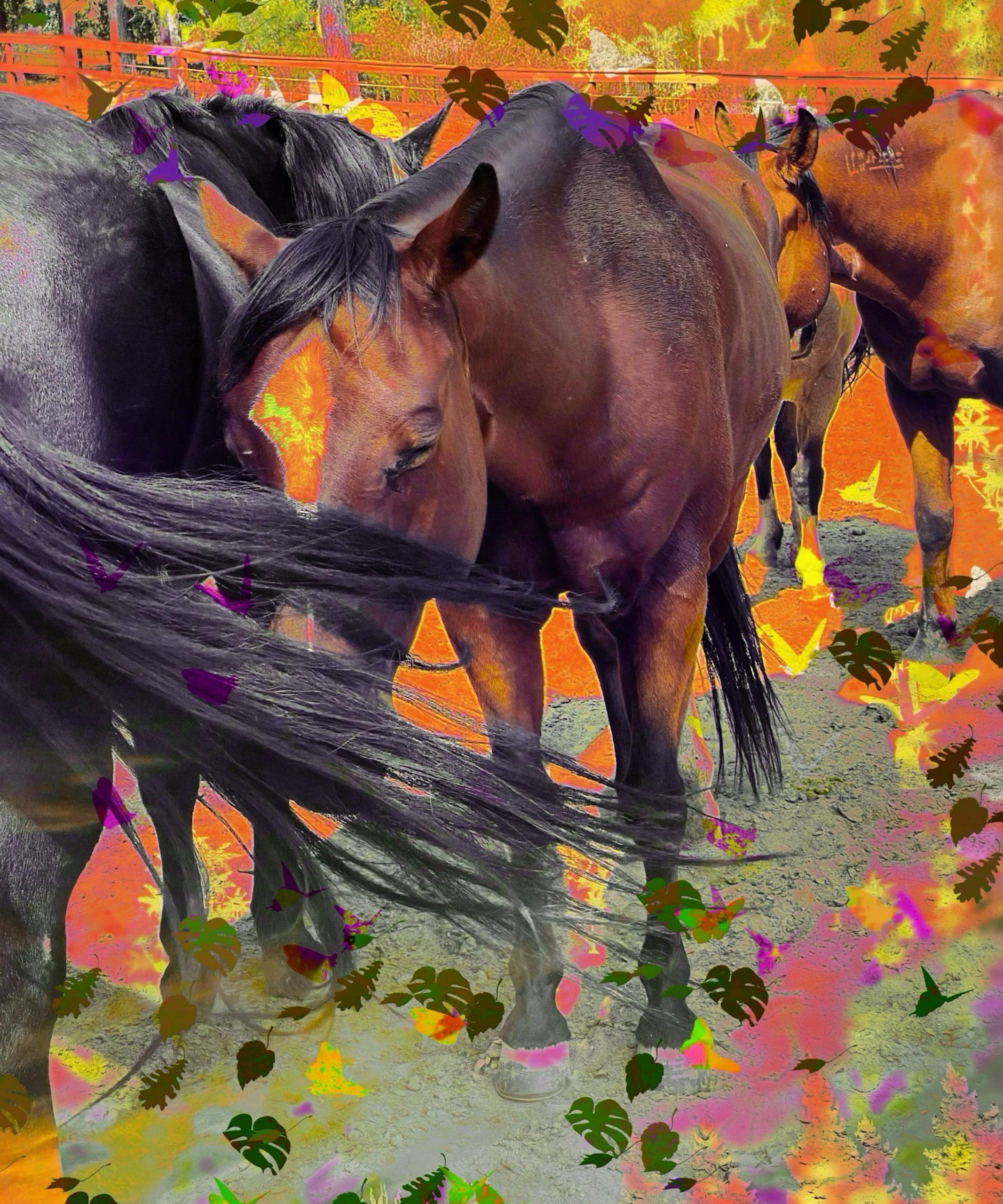 The Art of Horses.