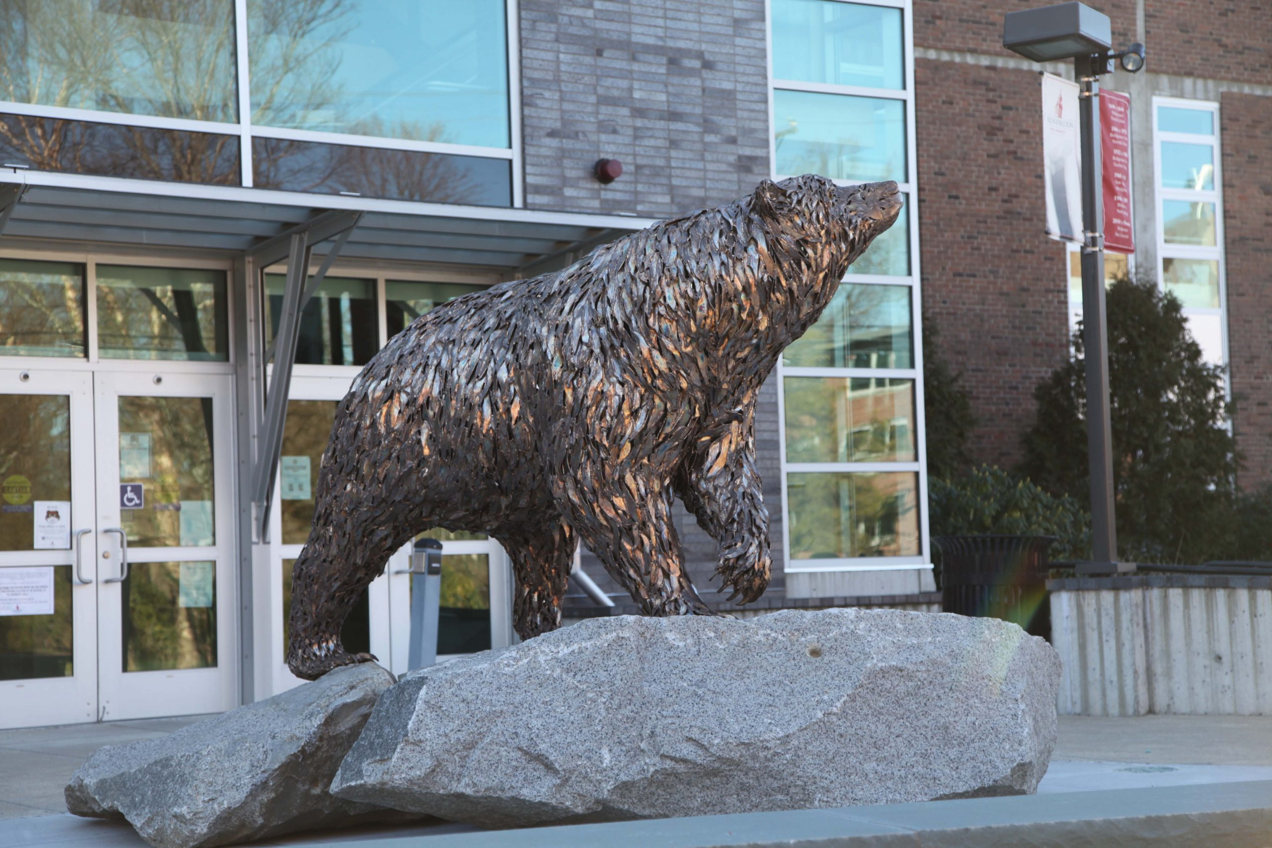 "Bear Mascot ""Bristaco"""
