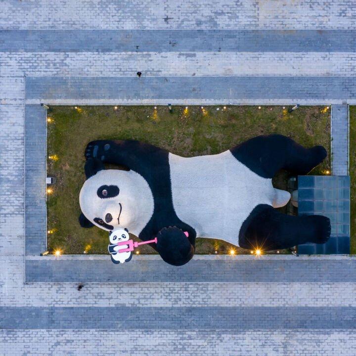 Selfie Panda