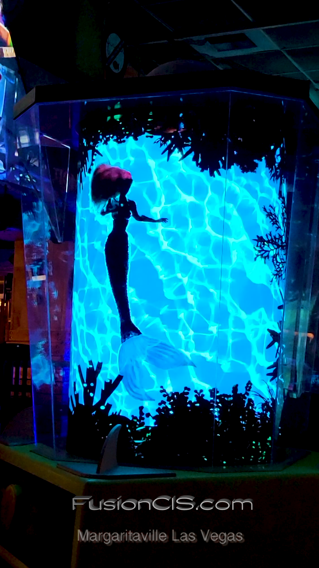 Digital Art Installation Transforms Margaritaville Las Vegas