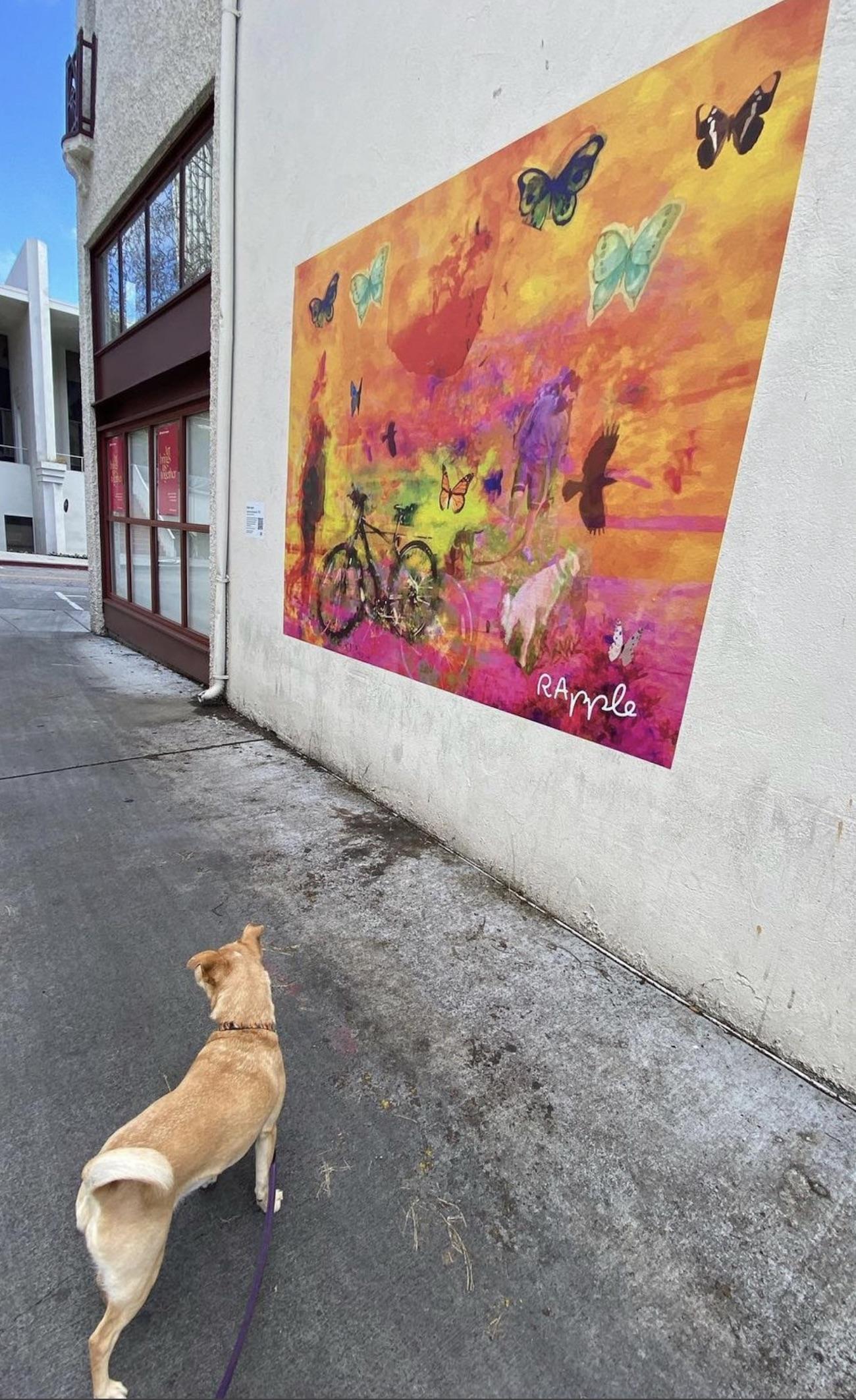 Palo Alto Temporary Murals Project.