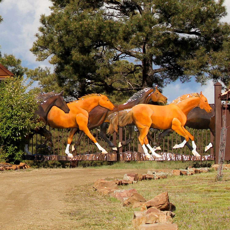 Ten Horses Running Gate