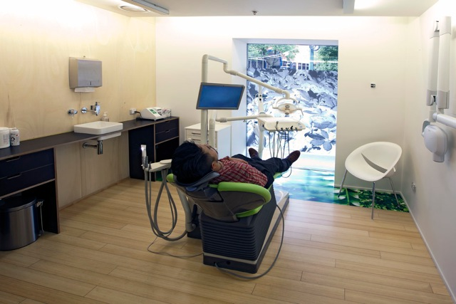 Wellington Dentists