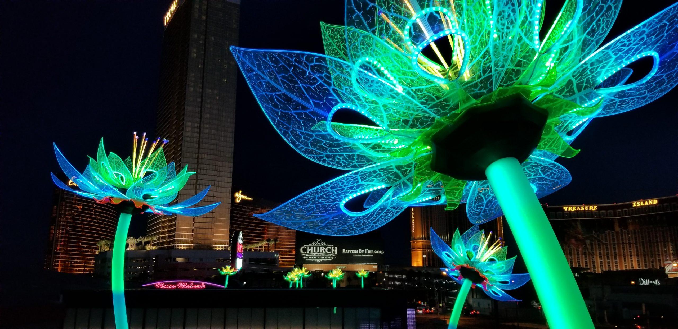 Interactive Lotus Blossoms