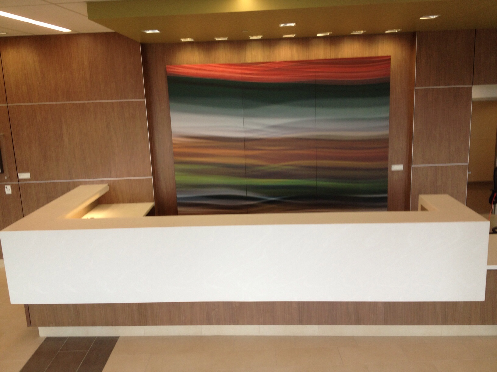 University Healthcare System Wall Commission