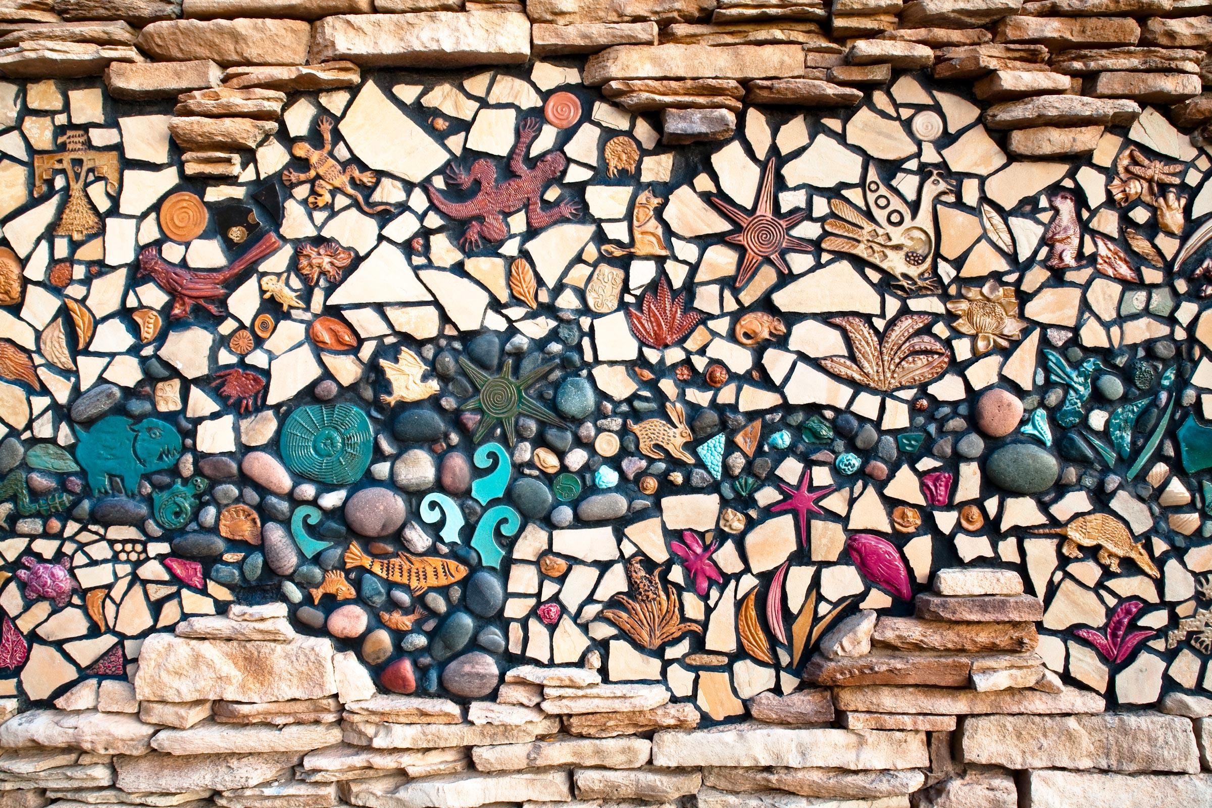 Flora and Fauna of Arizona