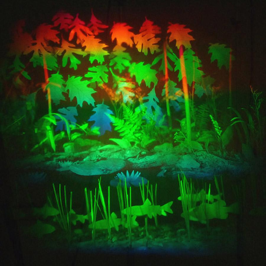 Light Pond and The Secret Garden