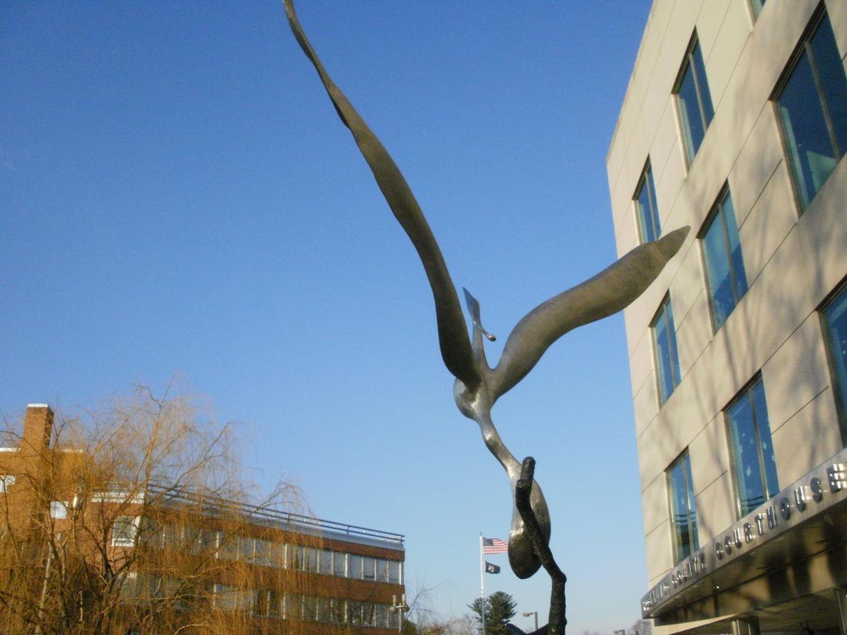 Ascending Bird