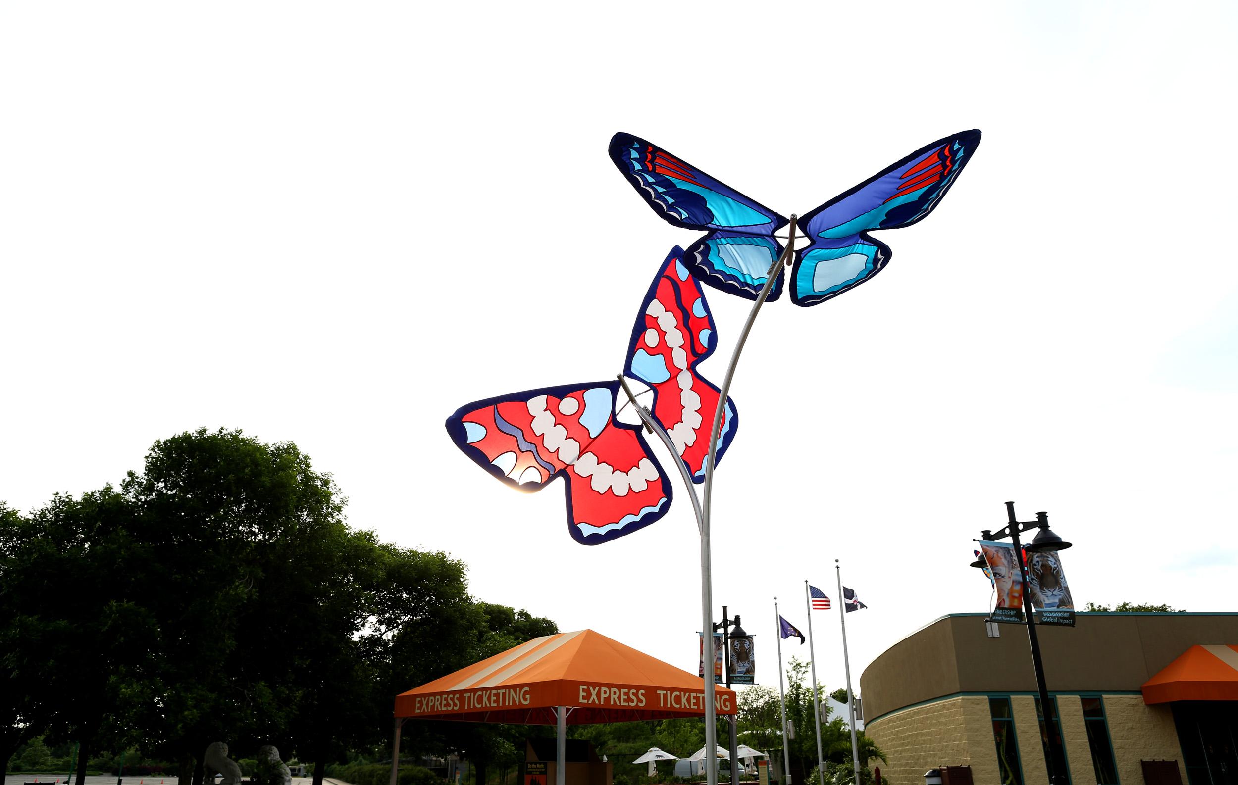 Butterflies at White River Gardens
