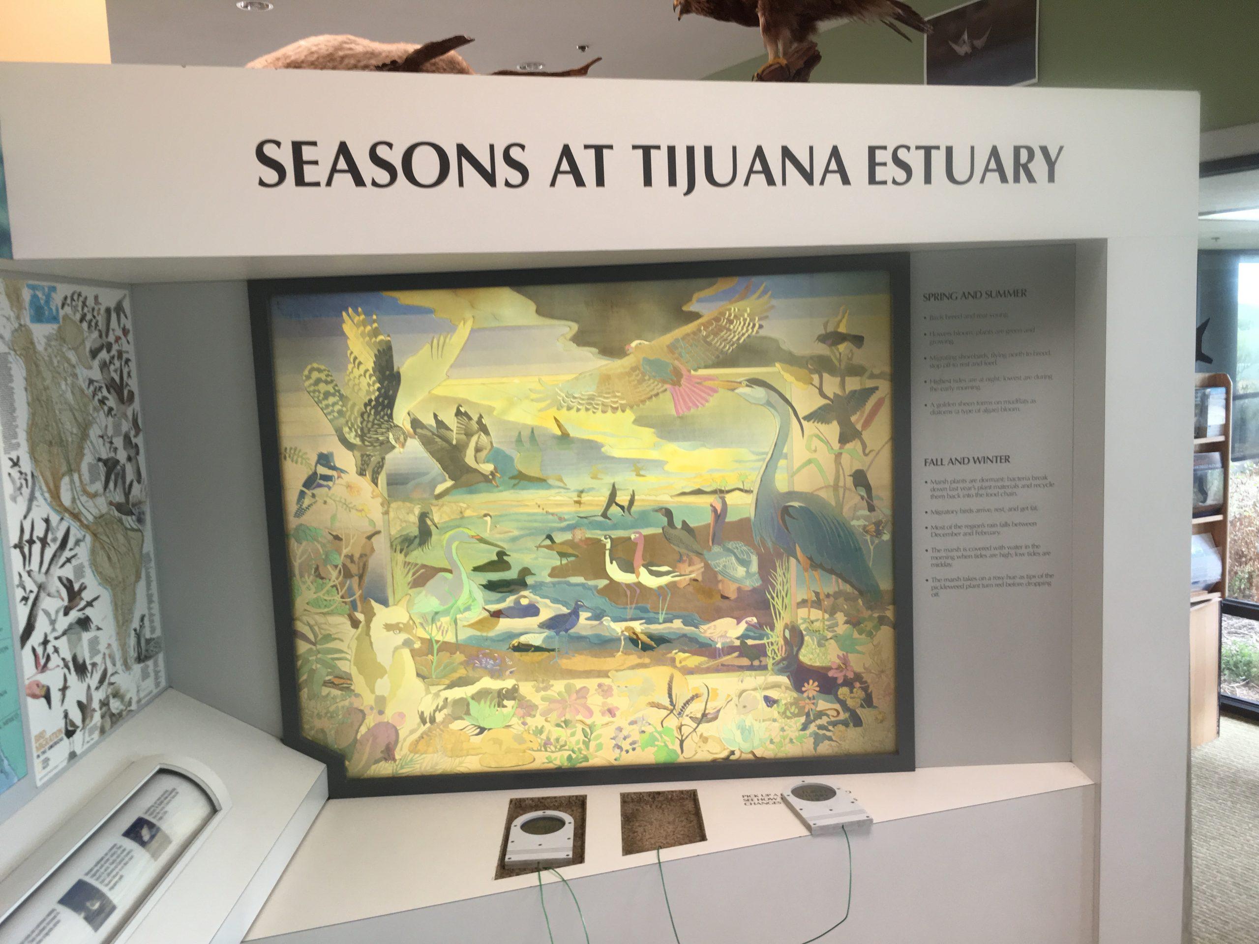 Tijuana Estuary Visitors Center