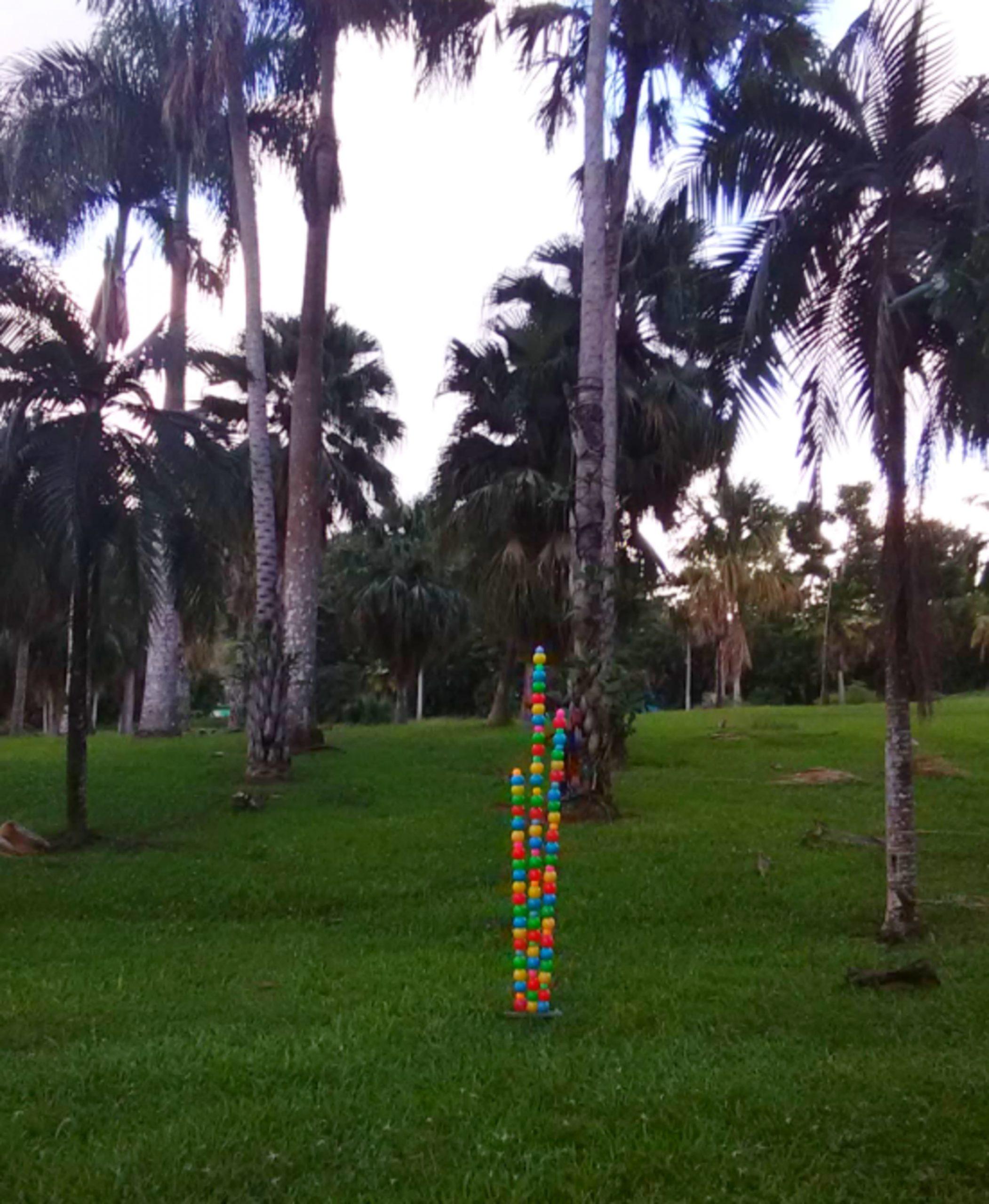 Minimalist Bamboos