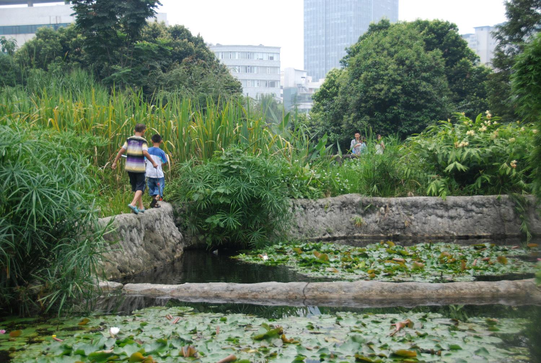 The Living Water Garden