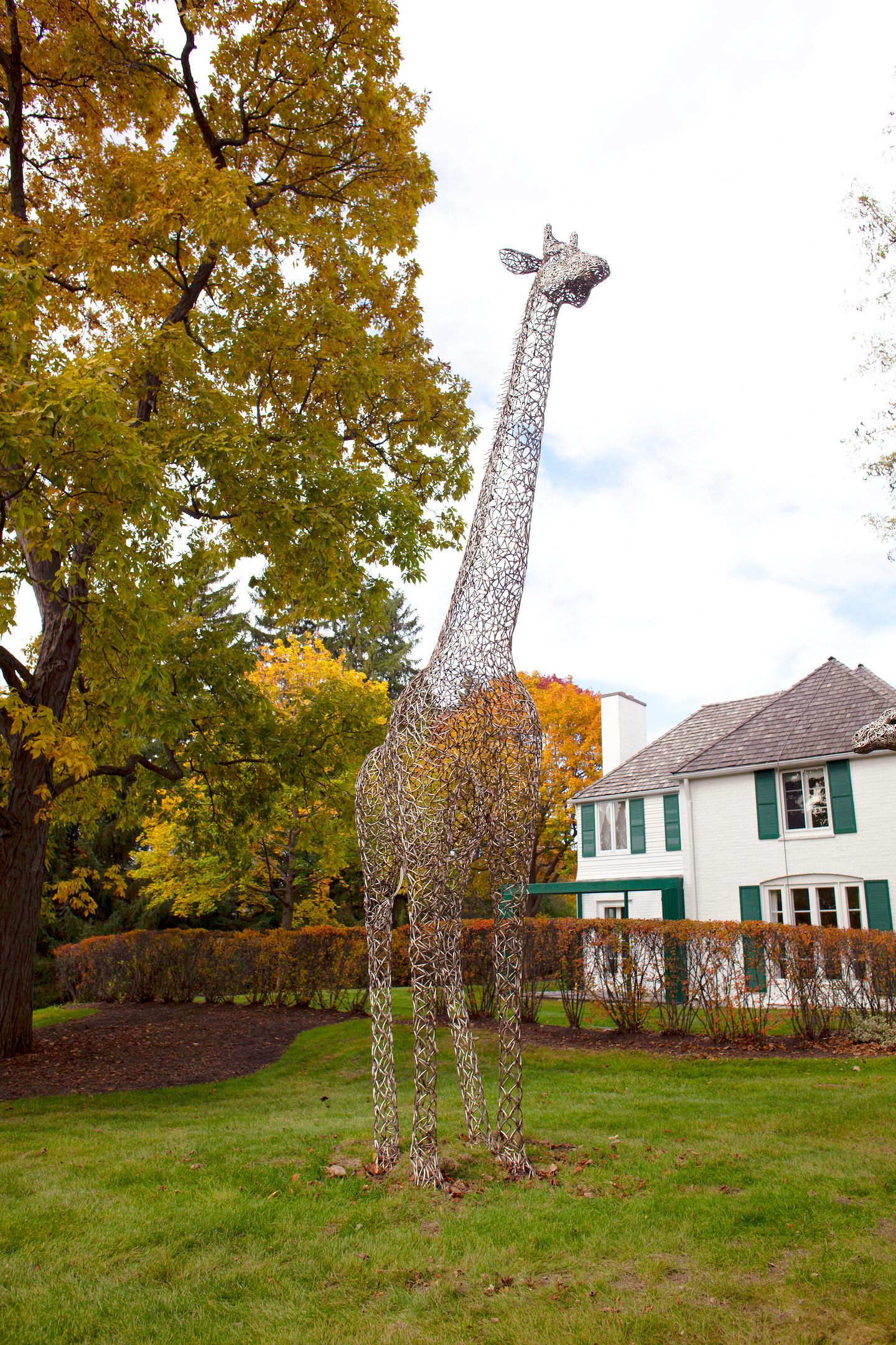 The Giraffe Project