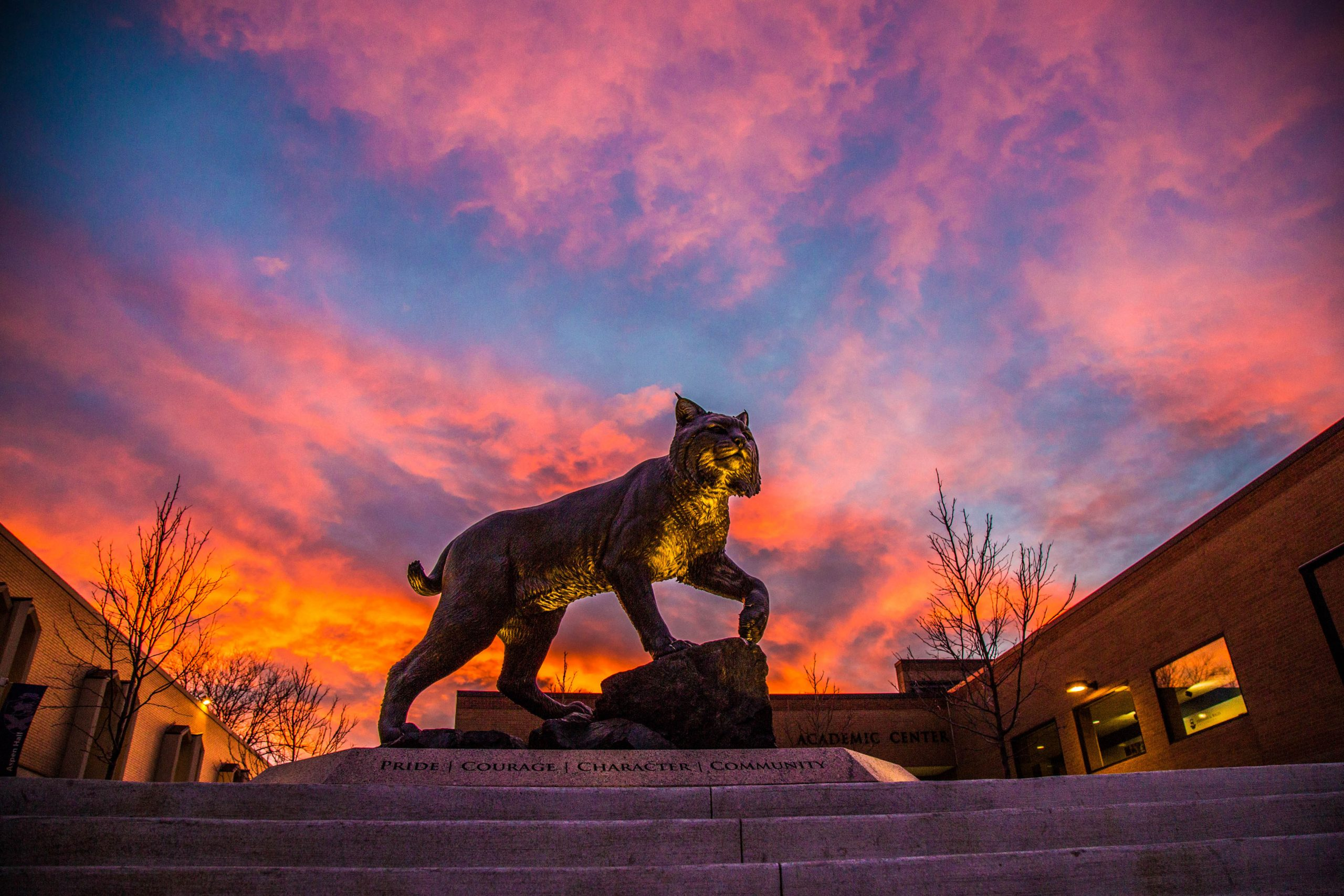 JWU Wildcat Monument