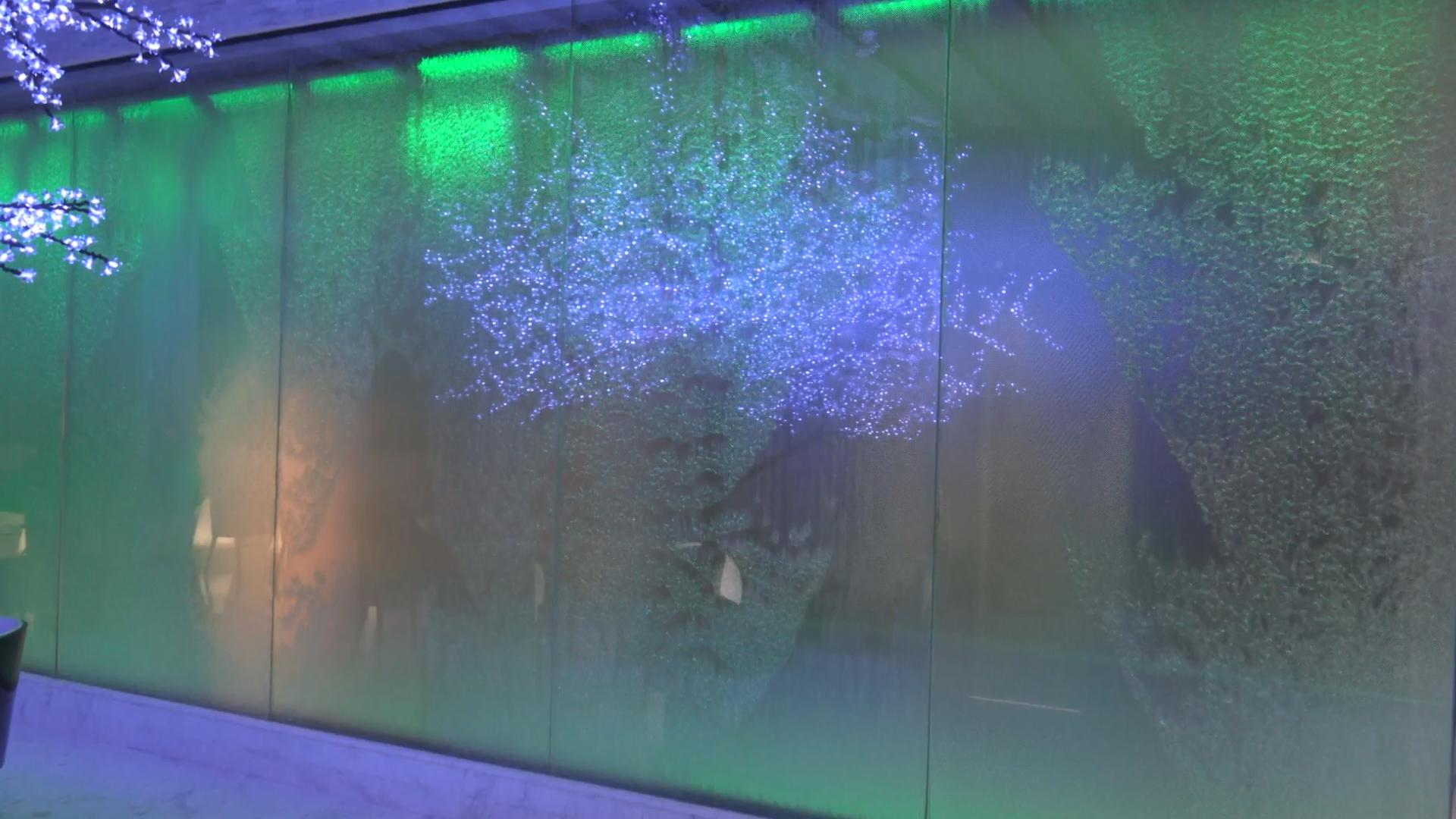 Digital Water Mural at Hotel Francisco I