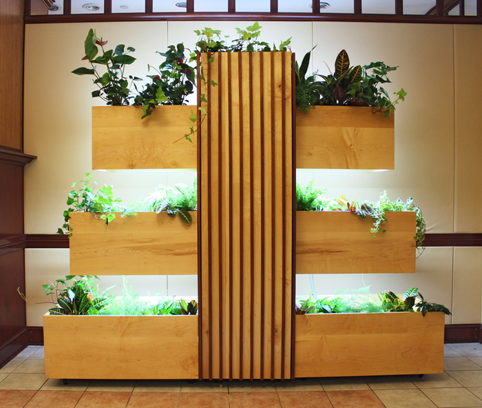 Fountain House Hydroponic LIving Wall