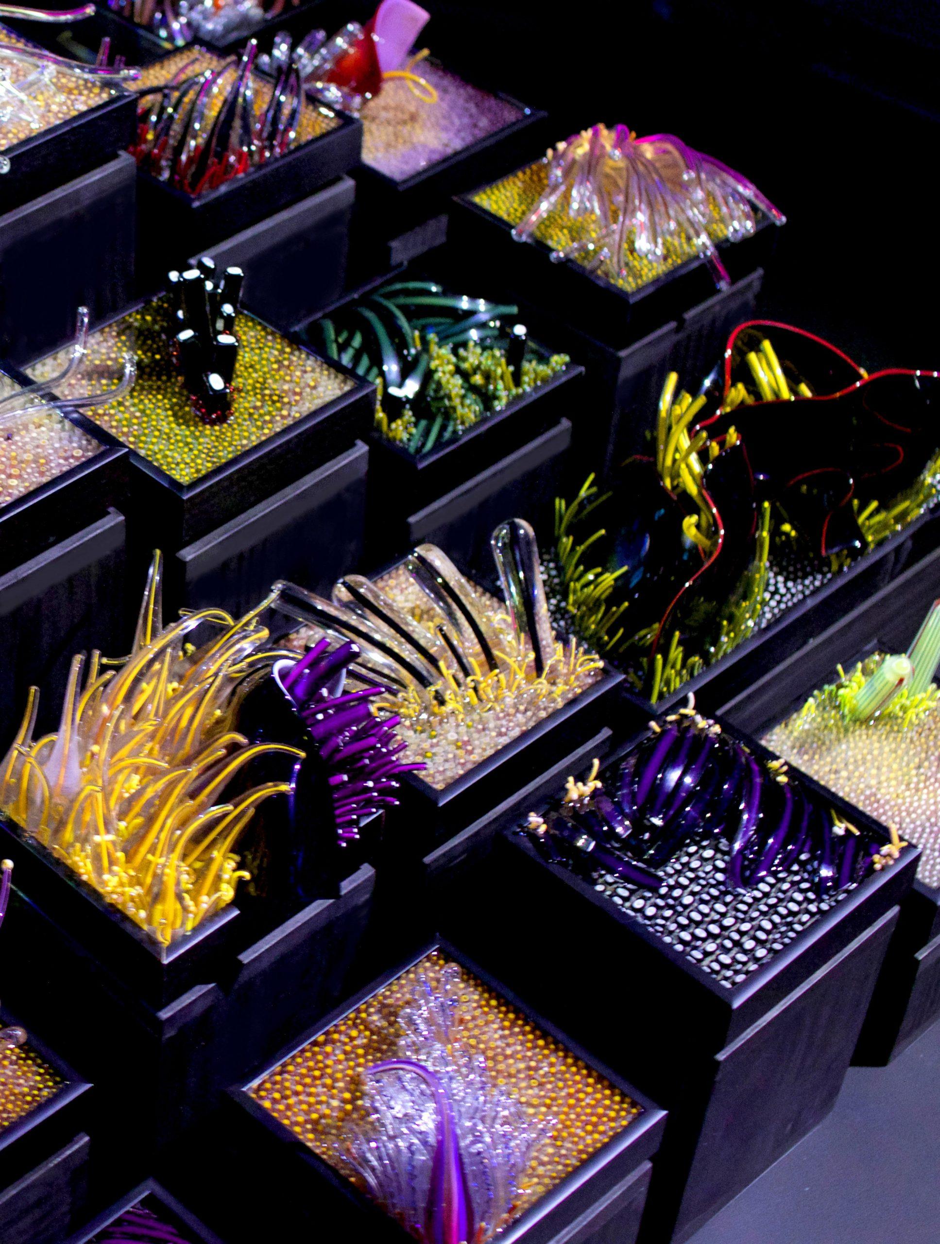 The Deep Aquarium Installation