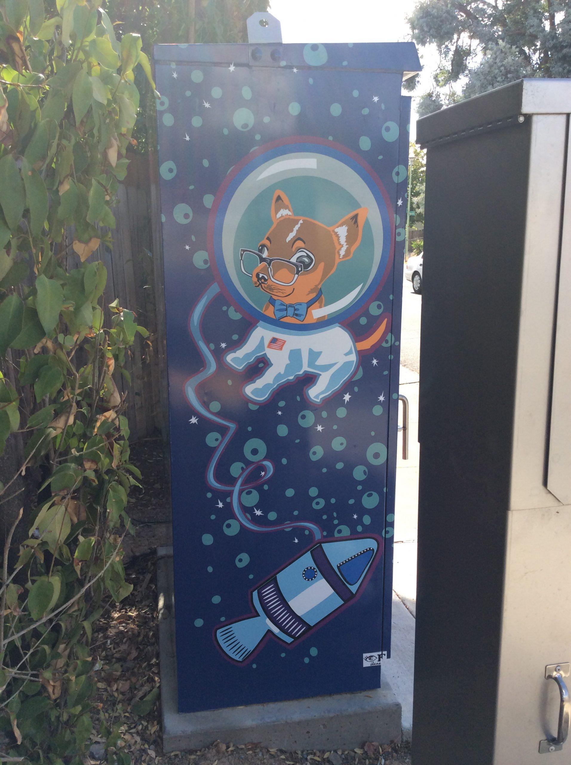Sacramento Utility Boxes Art