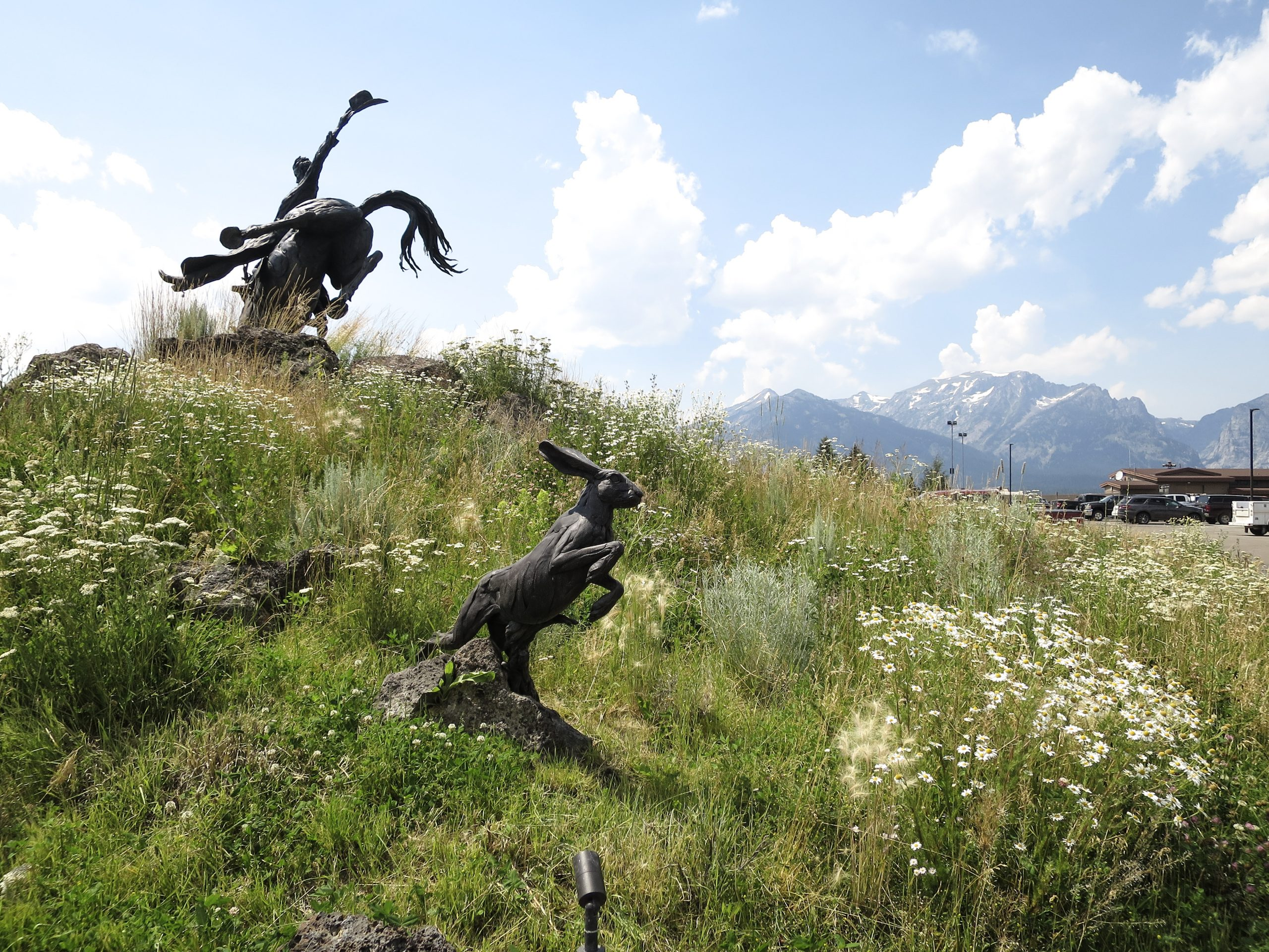 Jackson Hole Airport Entry