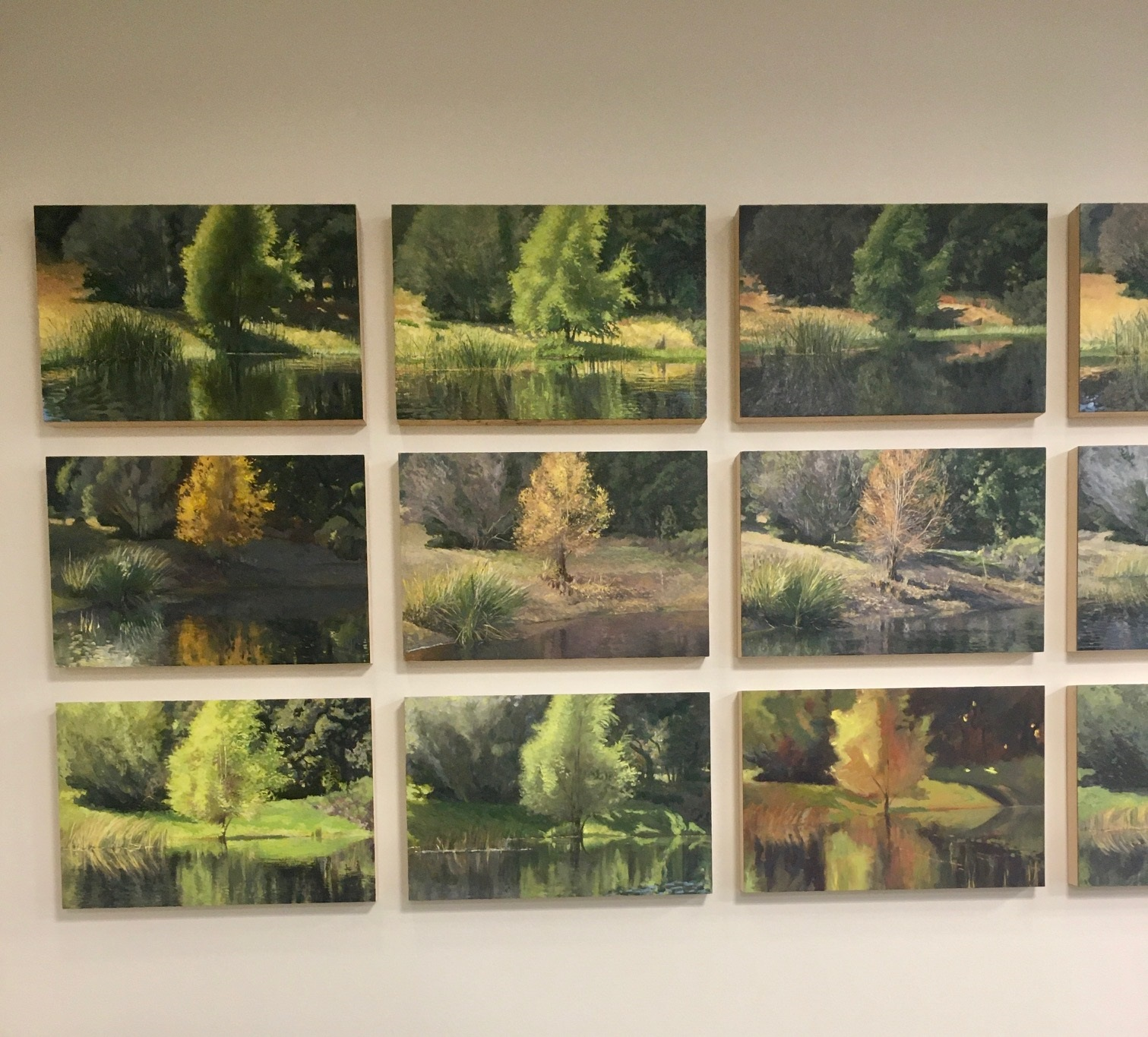 The Pond Series