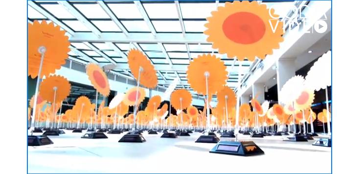 Turning Solar Flowers