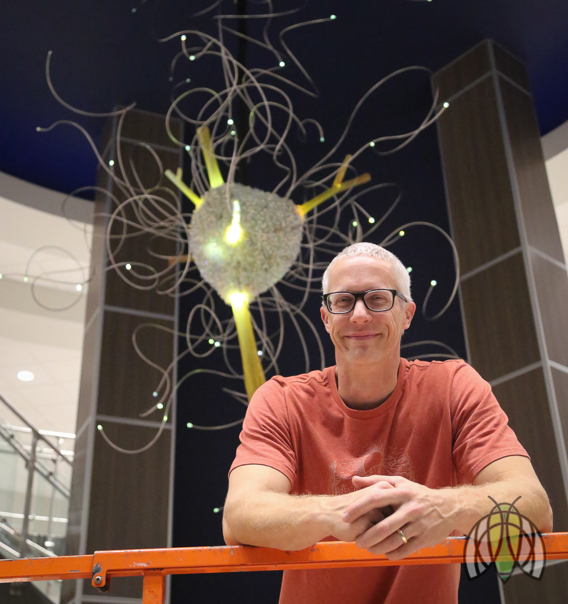 """Cook Museum of Natural Science Lobby Chandelier """"Swarm"""""""