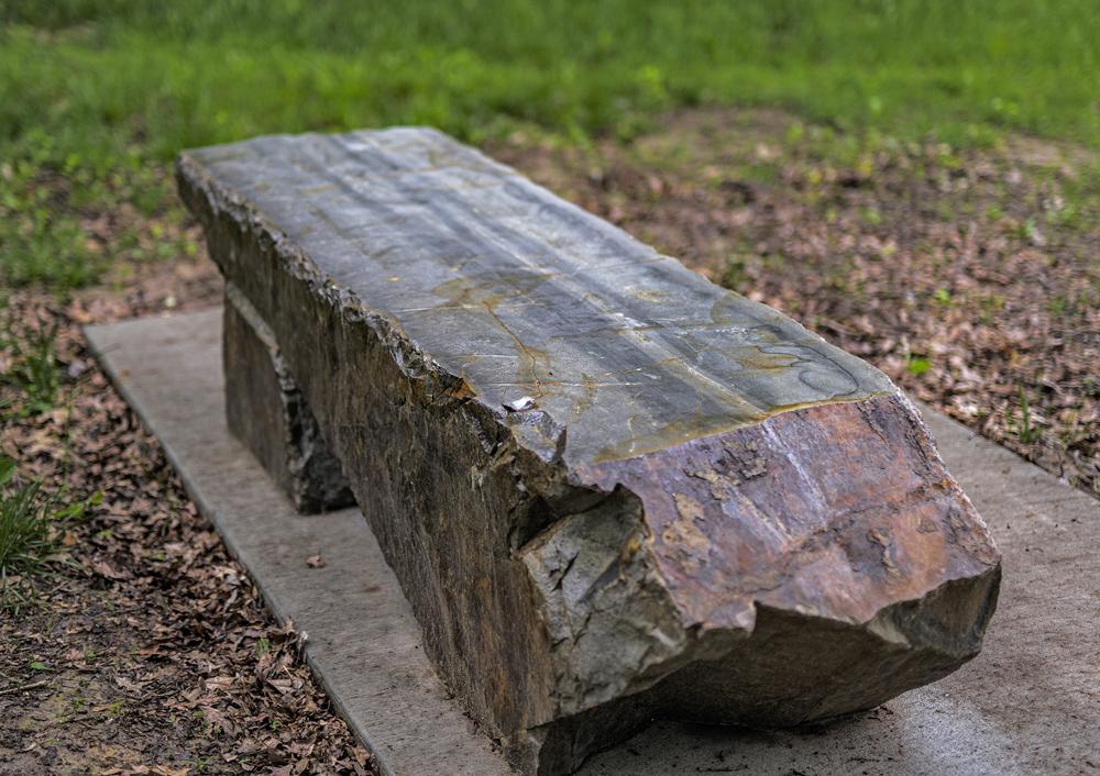 Morris Memorial Bench, Morris Park