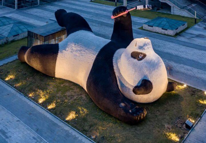florentijn-hofman-selfie-panda-rez-zou-27-jpeg